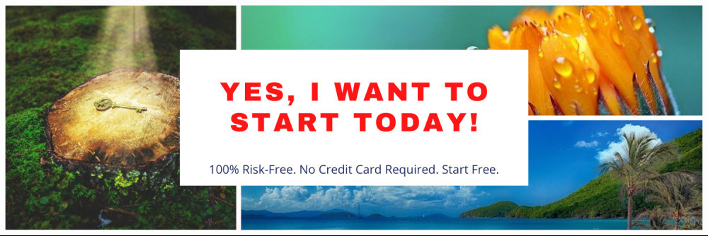 Yes I want to start a business today